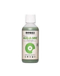 Alg.A.Mic