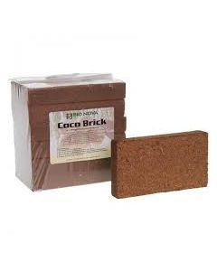 Coco Brick 6 panette